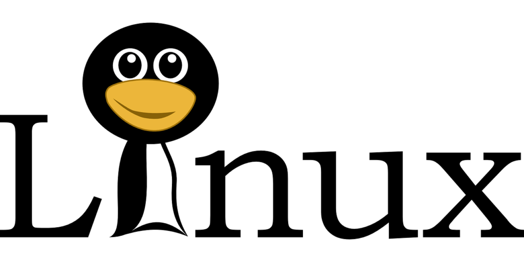 Linux without installing