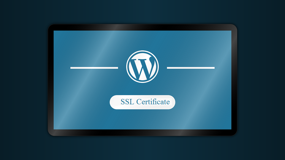 Benefits Of Ssl Certificates For Wordpress Website Tricky Enough