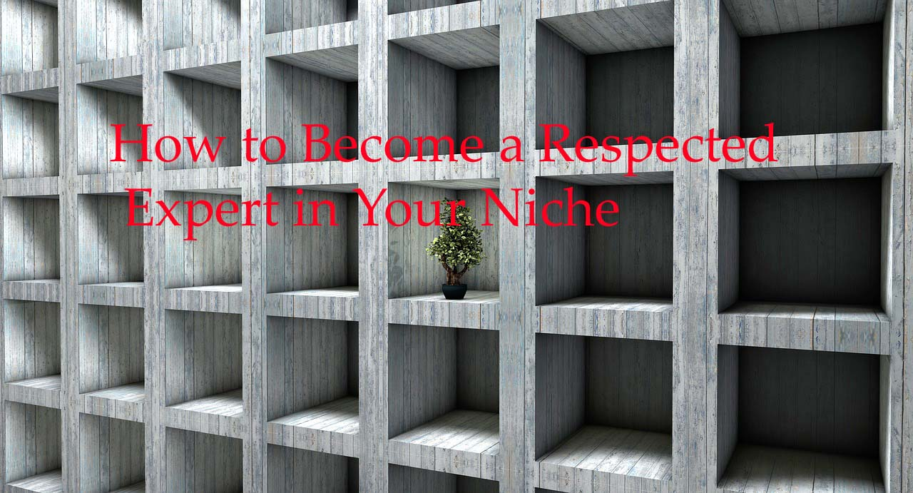 How to Become a Respected Expert in Your Niche