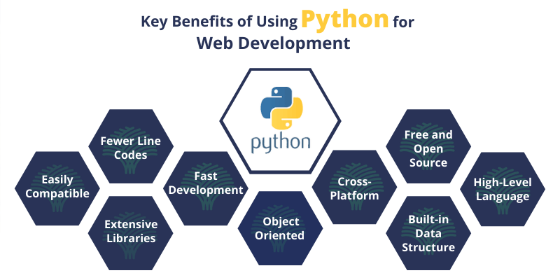 Tips for finding the best Python Development Company - Tricky Enough