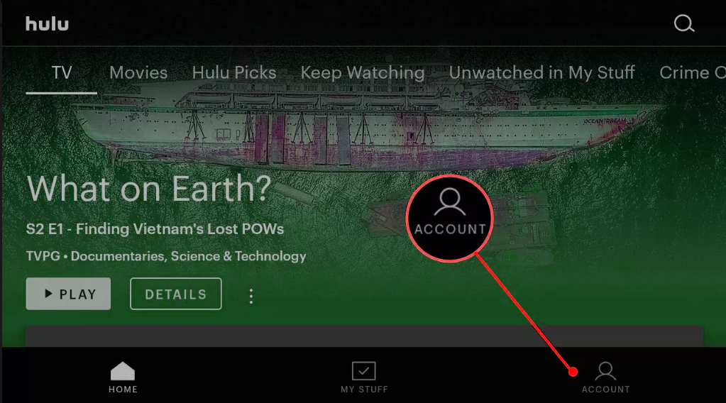 Showing Account section on Hulu with Parental lock