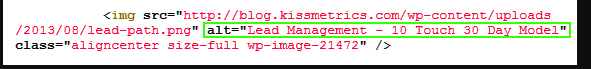 highlighting image alt tag to view source code of a website.