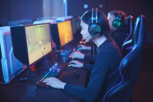 Understanding Video Game Developers as a Professional Company